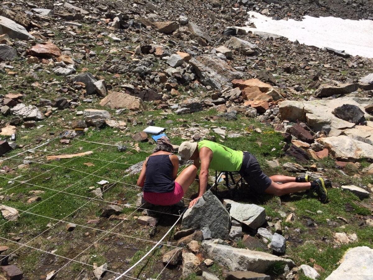 F11 Seguimiento de los neveros del Parque Nacional de los Pirineos