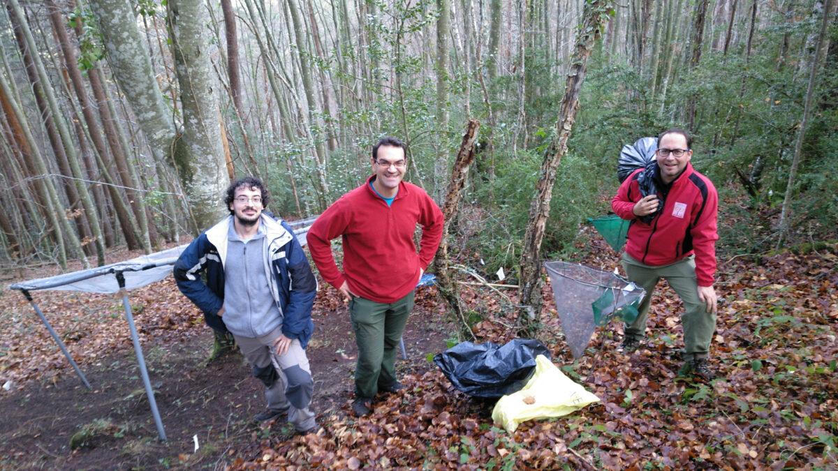 F7 Miembros del Grupo de Ecología y Medio Ambiente recogiendo hojarasca para la estimación de la circulación de nutrientes