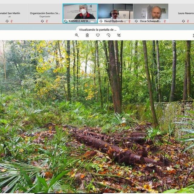 Seminario online para celebrar el Día Internacional de los Bosques